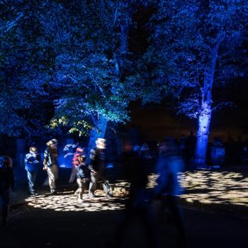 Light-Festival_2018_4